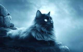 Оберег Кошка — наделяет новой энергией и заживляет душевные раны