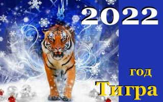 Как привлечь удачу в 2022 году : советы астрологов, выбираем талисманы и камни в год Тигра