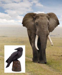 Слон и ворон