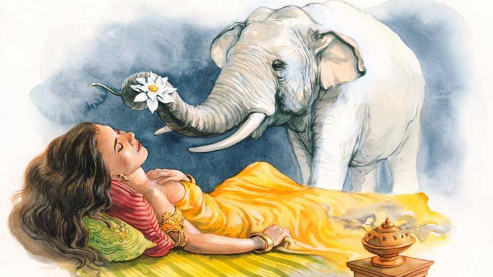 к чему снится сон о слоне