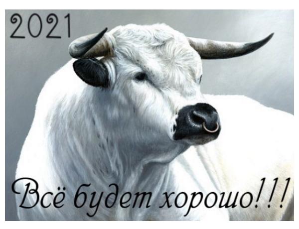Что нас ждет в 2021 год белого быка!!