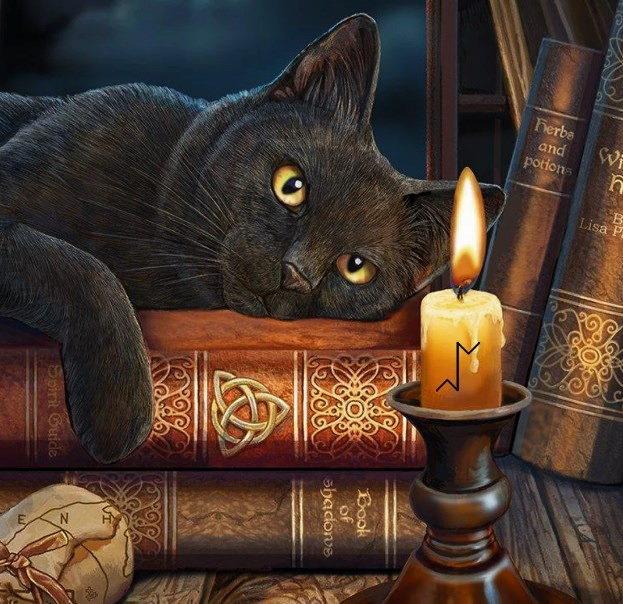 Кошки считались хранителями библиотек и монастырских рукописей